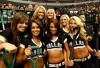 http://www.totalprosports.com/wp-content/uploads/2009/10/dallas-stars-ice-team-520x346.jpg