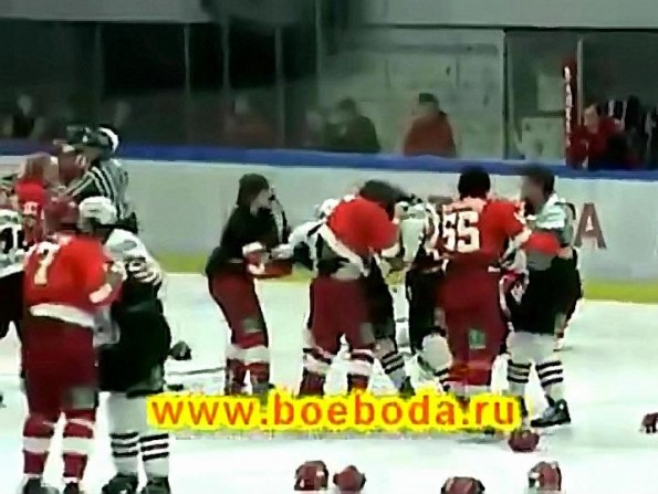 Hockey Brawl Cuts Game Short