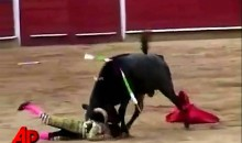 12 Year-Old Bullfighter Gored in Ring