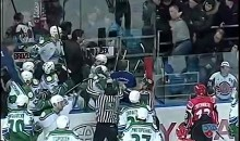 Fan Attacks Backup Goalie During KHL Action (Video)