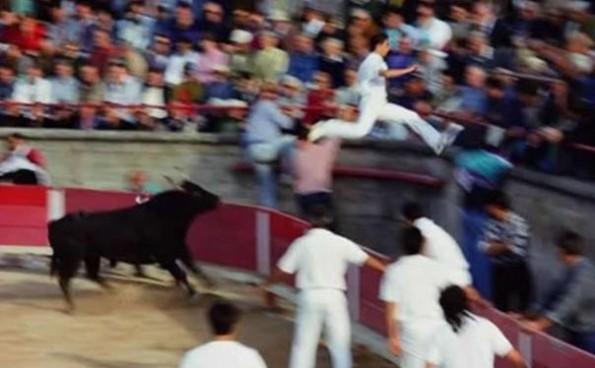 flying matador