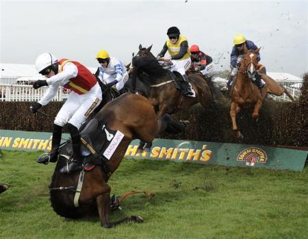 horse tuck-n-roll