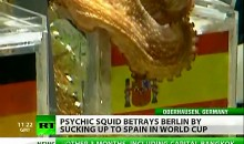 Paul The Octopus Disappoints Germans By Picking Spain