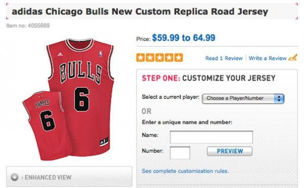 lebron james bulls jersey