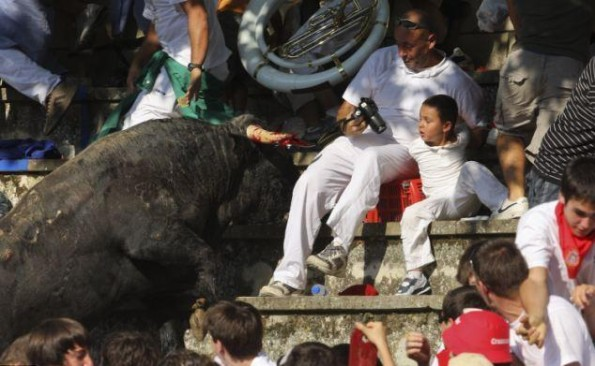 bull leaps into crowd 2