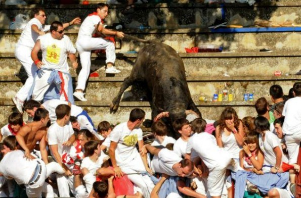 bull leaps into crowd 3
