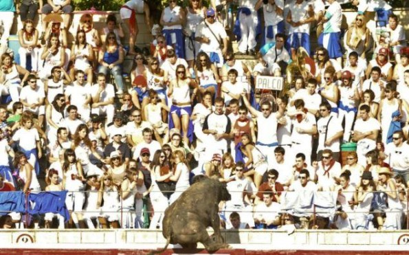 bull leaps into crowd 4
