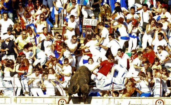 bull leaps into crowd 5