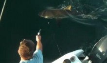 In Honor Of Shark Week, How To Pop A Cap In A Shark's Head (Video)