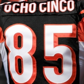 ocho_cinco_number_85_bengals_chad_johnson
