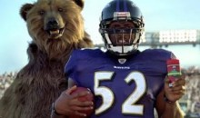 Does Ray Lewis Wearing Old Spice Make Bears Want To Speak English? (Video)