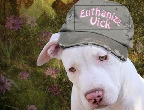 Euthanize Vick