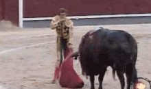 Getting The Horns (GIF)