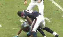 Cortland Finnegan And Andre Johnson Slug It Out On The Football Field (Video)