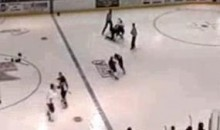 Here Is The Most Tame Line-Brawl You Will Ever See (Video)