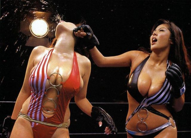 Picture Of The Day: Foxy Boxing | Total Pro Sports