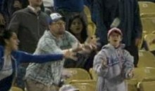Father Drops Daughter While Catching A Foul Ball (Video)