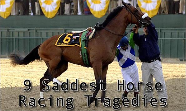 9 Saddest Horse Racing Tragedies Total Pro Sports