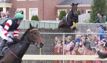 Race Horse Goes Wild, Jumps Fence And Crushes Spectators (Video)
