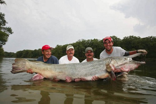 Welcome to chyson 39 s blog world 9 largest fish ever for What is the biggest fish ever caught