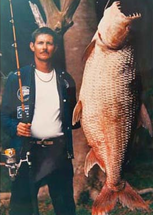 9 largest fish ever caught total pro sports for What is the biggest fish ever caught
