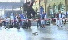 Skateboarding + High Jump = Awesome! (GIF)