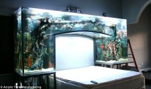 Chad Ochocinco's Headboard Is A Giant Aquarium (Pics)