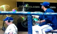 It Was Raining Sunflower Seeds In The Brewers' Dugout (Video)