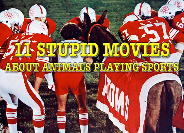 stupid movies about animals playing sports
