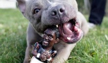 Picture Of The Day: Chew On Vick