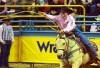 http://www.totalprosports.com/wp-content/uploads/2011/10/trevor-brazile-rodeo-e1318605501291.jpg