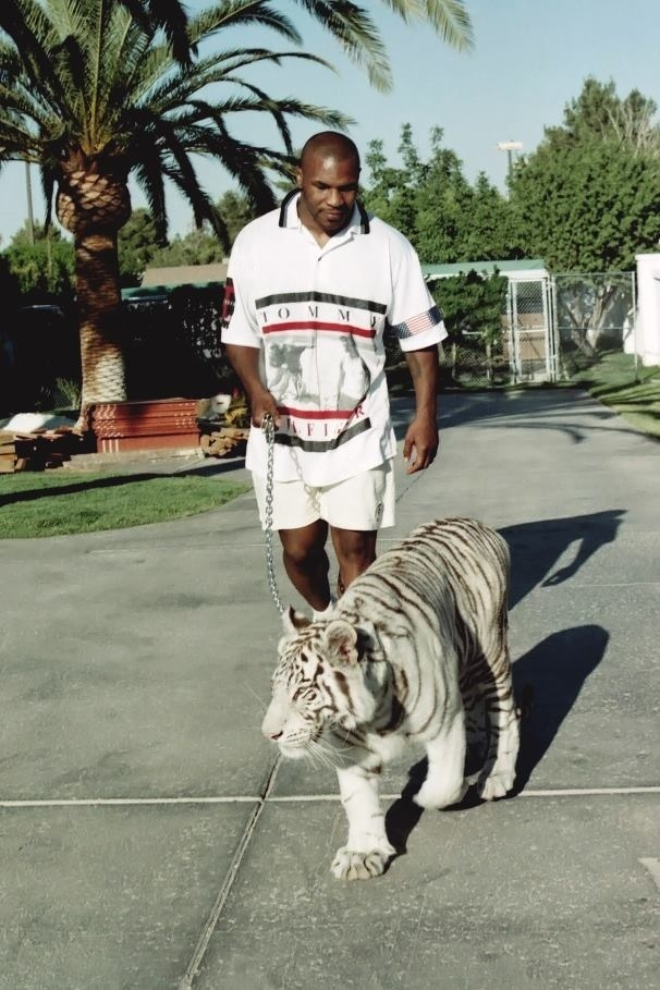 Tyson and his White Tiger