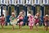 http://www.totalprosports.com/wp-content/uploads/2011/12/Thats-not-a-horse-race1-520x390.jpg