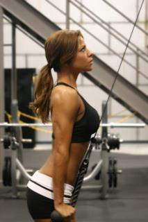 The Perfect Tricep Workout