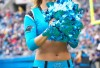 http://www.totalprosports.com/wp-content/uploads/2012/01/Panthers-Laura-294x400.jpg