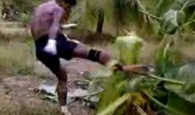 Muay Thai Guy Kicks Down A Tree (Video)
