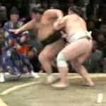 sumo referee ko'd