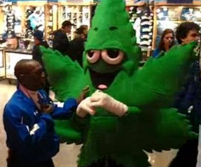 100 Smoking Weed In The Backyard Marijuana World Feature  sc 1 st  Meningrey & Costume Idea Database - Meningrey