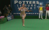 http://www.totalprosports.com/wp-content/uploads/2012/04/girls-streaking-21.png