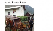 This Horse And Carriage Will Lead Anze Kopitar's Stanley Cup Parade In Slovenia