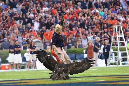 13 auburn mascot war eagle