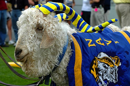 16 navy mascot bill the goat xxxiii