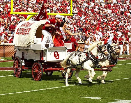 19 oklahoma mascots boomer and sooner