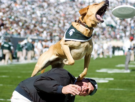 22-michigan-state-msu-mascot-zeke-iii-zeke-the-wonder-dog