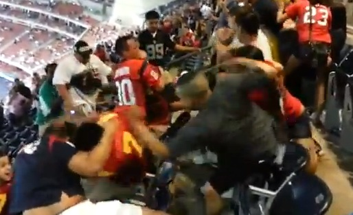 49ers texans fan fight