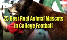 25 Best Real Animal Mascots in College Football