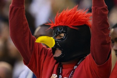 29 arizona cardinals fan creepy nfl fans