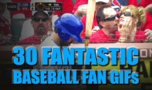 30 Fantastic Baseball Fan GIFs