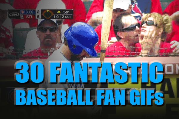 baseball fan gifs