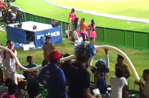 beer cup snake at cricket game